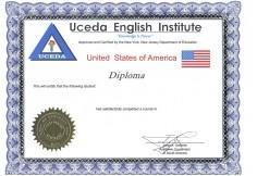 DIPLOMA INTERNACIONL EMITIDO POR EL DEPARTAMENTO DE EDUCACCION DE NEW YORK. ESTE VIENE DIRECTAMENTE DESDE NUESTRA CASA MATRIZ EN