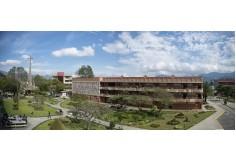Centro Universidad Técnica Particular de Loja - Ecuador Ecuador