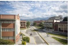 Centro Universidad Técnica Particular de Loja - Ecuador Loja